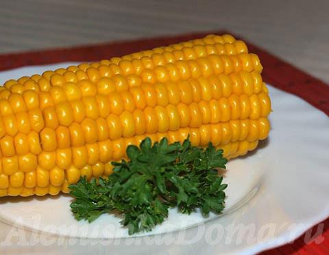 Как вкусно сварить кукурузу. Готовое блюдо.
