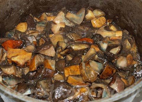 Жареные грибы моховики со сметаной